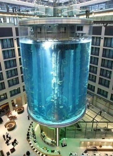 Самый большой аквариум где