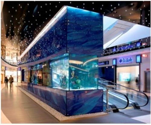 Самый большой аквариум в Дубае