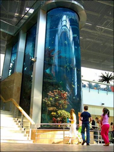Самый большой аквариум
