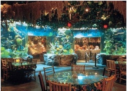 Самый большой аквариум находится в
