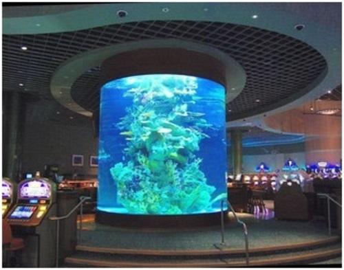 Самый большой  аквариум в Японии