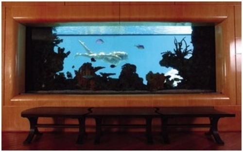 Самый большой аквариум фото